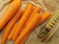 Karotten schrubben